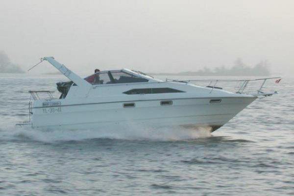 bayliner 2655 type 2855